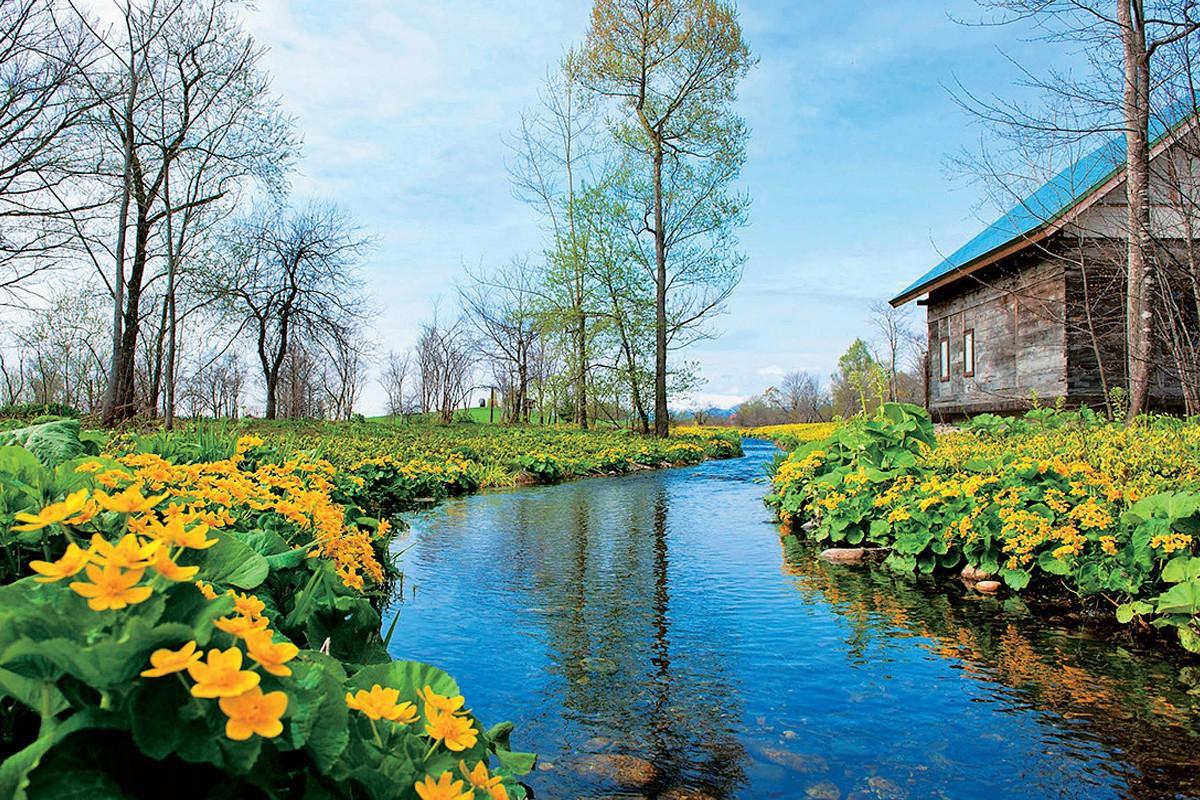 六花の森(中札内村)|まるでおとぎ話の世界! 五感で癒される「北海道ガーデン街道」をめぐる旅