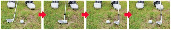芝の薄い2jpg