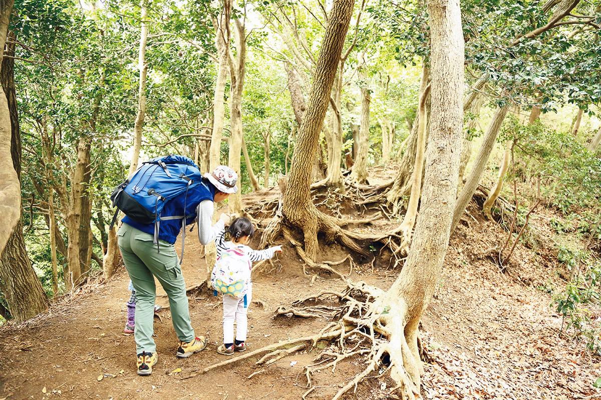 [親子ではじめてのハイキング]山のマナーを守ると、日常もきっと気持ち良く過ごせる