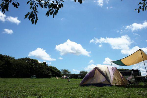 キャンプ場ガイド「ゆめ牧場キャンプ」(千葉県成田市)