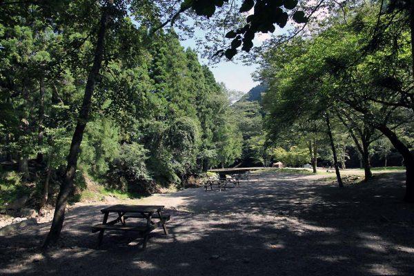 キャンプ場ガイド「ボスコオートキャンプベース」(神奈川県秦野市)