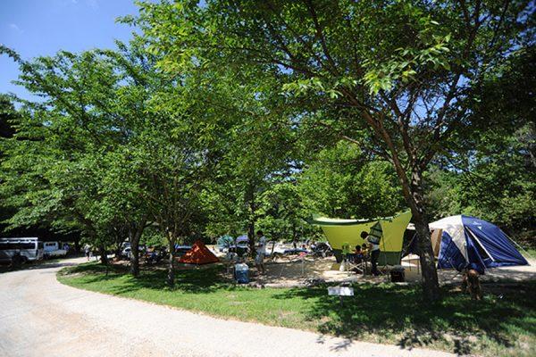 キャンプ場ガイド「自然の森ファミリーオートキャンプ場」(大阪府豊能郡能勢町)
