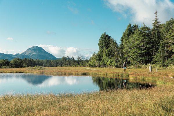 日光白根山~至仏山|ニッコーオゼ・ロングトレイル65kmで栃木、福島、群馬の県境を行く