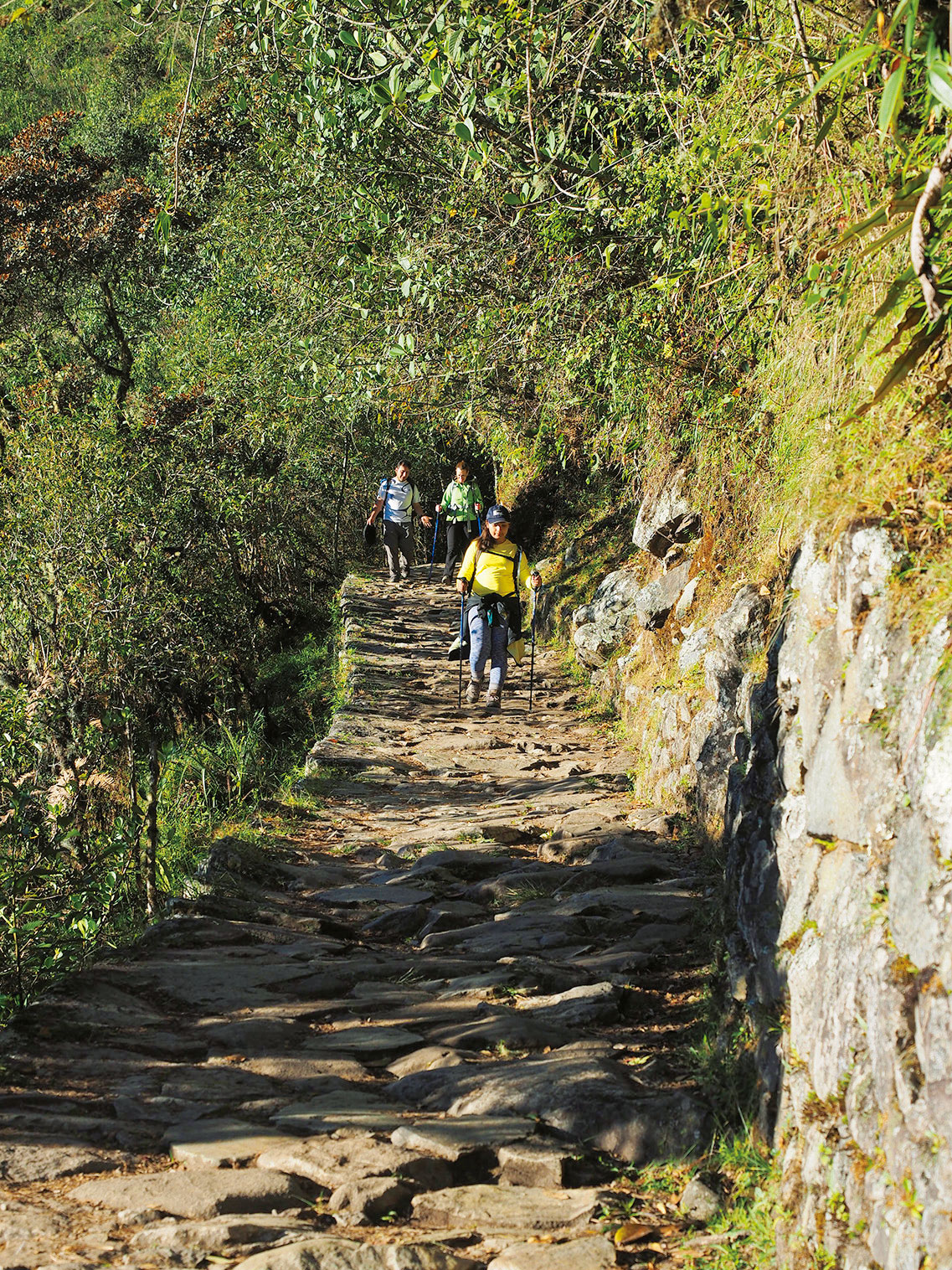 マチュピチュ観光インカ道トレッキング
