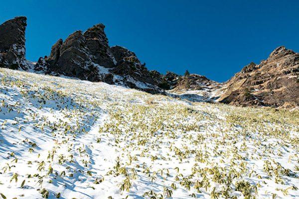 フォトグラファーが撮り歩く浅間山外輪山ルートガイド