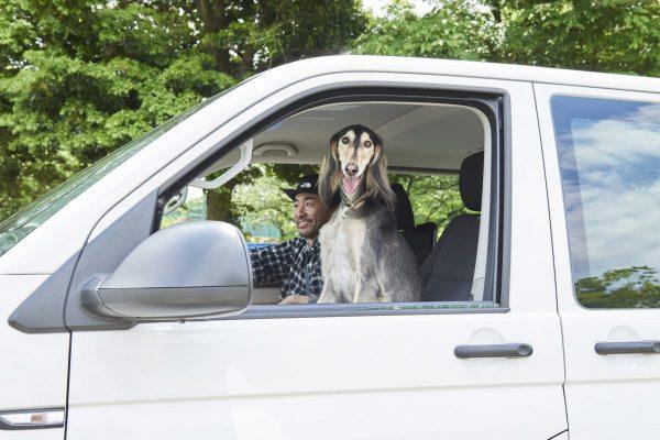 愛犬たちと遊ぶための、カスタムVW(フォルクスワーゲン)トランスポーター 。
