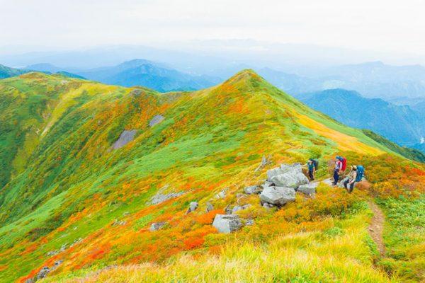 紅葉の飯豊連峰 2泊3日の女子山旅