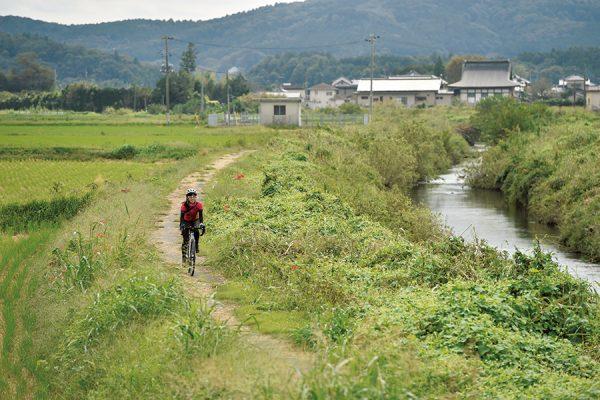 恋瀬川サイクリングロード|茨城県・ジャパンバイシクルルート実走調査
