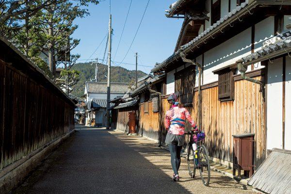 守山〜近江八幡〜彦根|滋賀県・ジャパンバイシクルルート実走調査