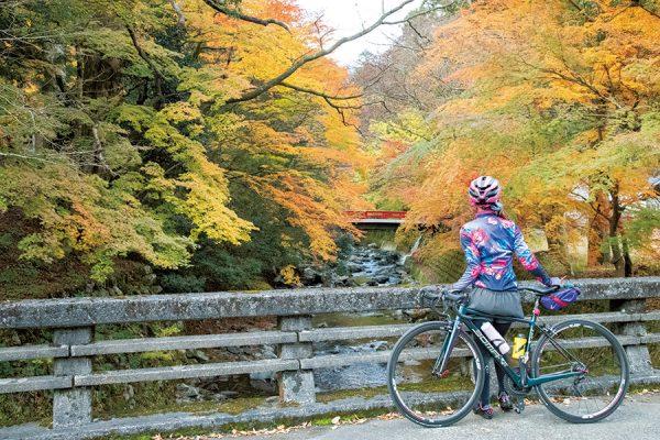 高島〜鯖街道〜マキノ|滋賀県・ジャパンバイシクルルート実走調査