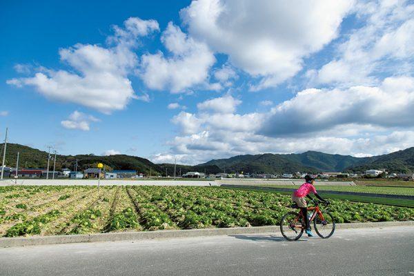 南海岸ミドルコース|兵庫県・ジャパンバイシクルルート実走調査