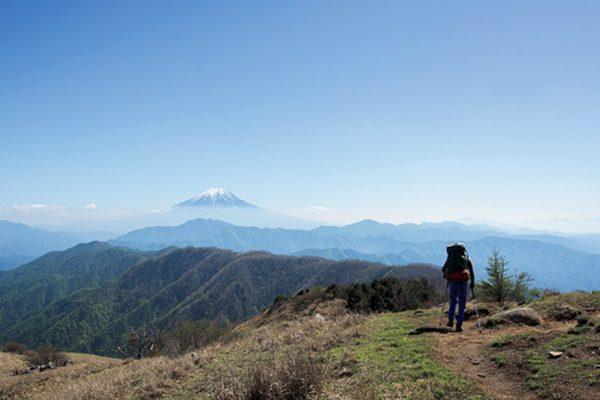 秀麗富嶽十二景の旅 |春の息吹に包まれ富士を見上げる 大菩薩嶺〜滝子山 ルートガイド
