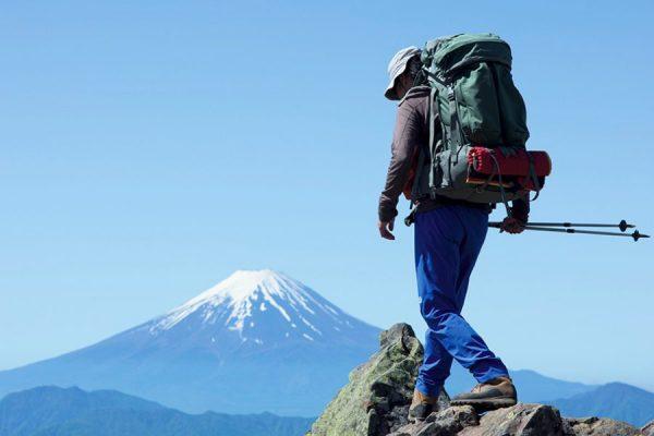 秀麗富嶽十二景の旅 春の息吹に包まれ富士を見上げる