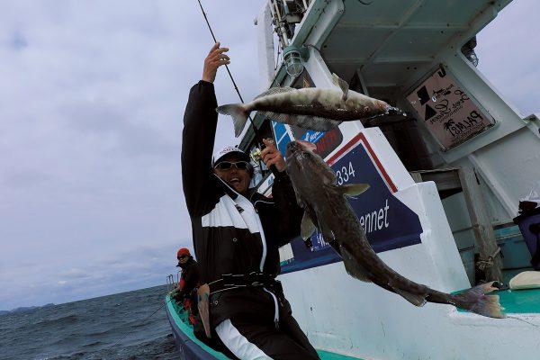 北海道・積丹半島美国沖でのスーパーライトジギングで驚異的な釣果を達成!【後編】