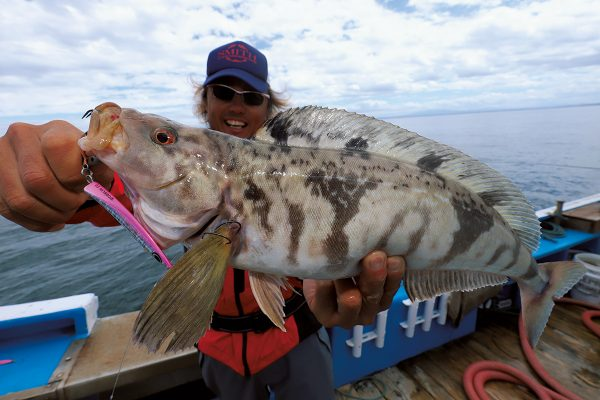 高級魚アオゾイ連発! オホーツク海はまさに根魚天国だ!【前編】