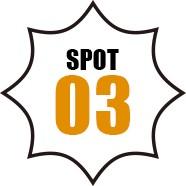 SPOT 03