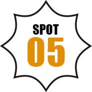 SPOT 05