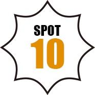 SPOT 10