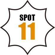 SPOT 11